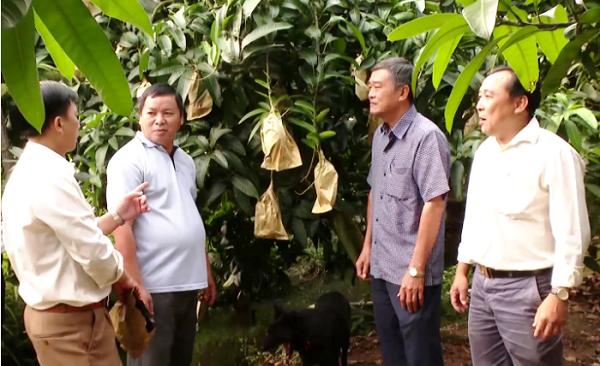Tiền Giang: Làm tốt việc này, tỉnh xuất hiện hơn 100.000 hộ nông dân thu nhập hàng trăm triệu/năm