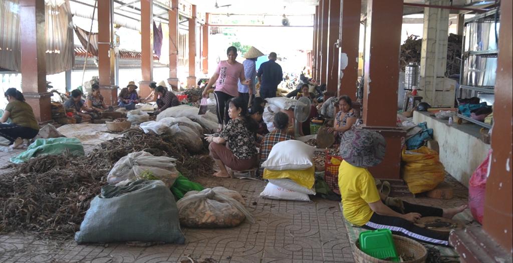 Tham quan phòng thuốc nam từ thiện lớn nhất nhì miền Tây ở Kiên Giang